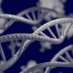 Reasons Why Scientists Study Gene Expression