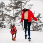 How To Find The Right Winter Accessories For Your Pets On A Budget