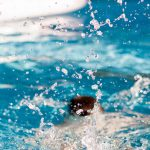 Reasons Why You Should Hire Swimming Pool Services