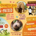 Win a family ticket to Colchester Zoo this Summer!