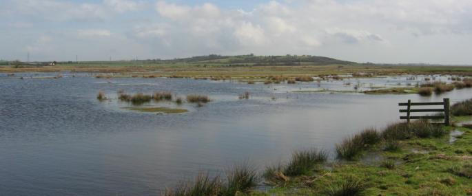 Blue House Farm Nature Reserve