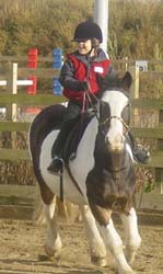 Shopland Hall Equestrian Centre