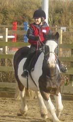 Shopland Hall Equestrian Centre