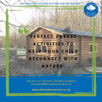 The Treehouse Club – Forestry Nursery & Out of School Club