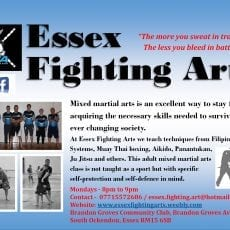 Essex-Fightin-Arts-Advert.jpg