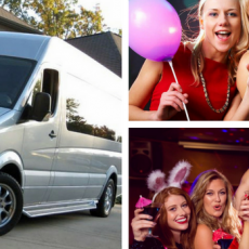 Limo Style, Party Bus Hire