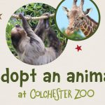 Colchester Zoo Animal Adoptions