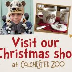 Visit Our Christmas Shop