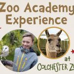 Colchester Zoo Kids' Zoo Academy