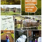 Barleylands Farm, Billericay